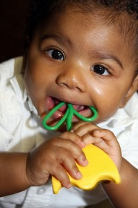 Eight-month-old Justin, born five weeks premature, plays with the tulip rattle developed by Maddie's World.
